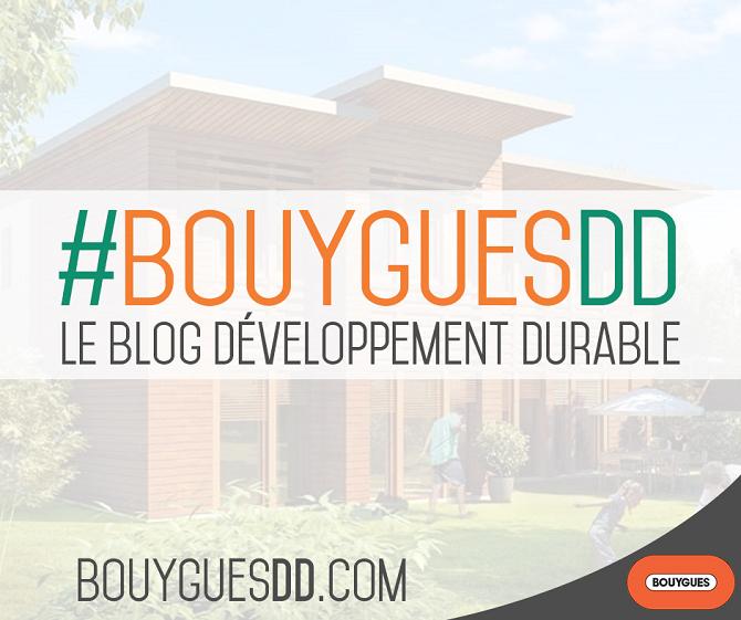 Visuel-lancement BouyguesDD_blog