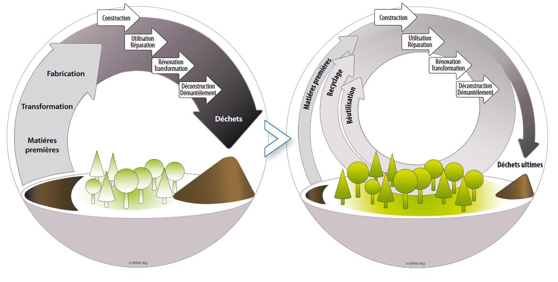 Schéma d'une économie circulaire de la gestion des déchets en construction (Source : Cifful, Ressources, Confédération Construction)